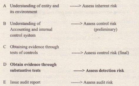 Difference between test of control and substantive procedures